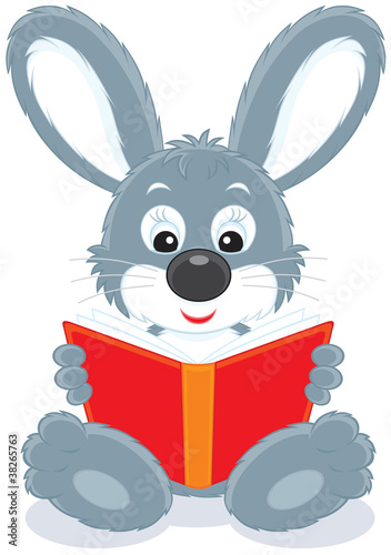 Hare reading a book