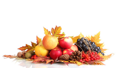 beautiful autumn harvest and leaves isolated on white