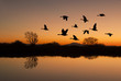 Leinwanddruck Bild - Canadian Geese at Sunset