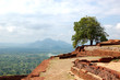 The view from Sigiriya (Lion's rock) is an ancient rock fortress