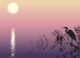 Vector background. Heron in the reeds at the lake