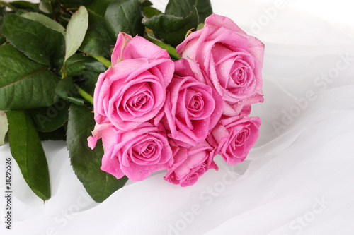 Many pink roses in a white cloth isolated on white