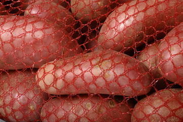 Some potatoes sold in a net : variety of roseval