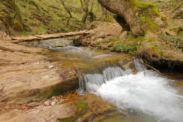 Gill in a ravine