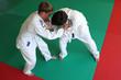 Judo fight.