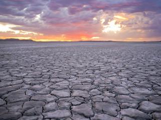 Dry Desert Landscape