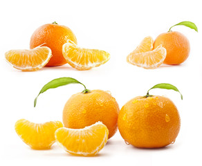Tangerines with water drops and green leaves