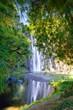Cascade Niagara - Ile de La Réunion