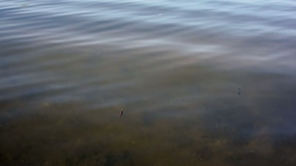 Shallow water with ripples