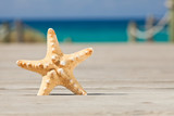 Starfish on a wooden path leading to the beach. Formentera.