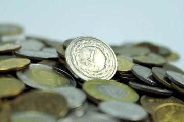 Polish coins with one zloty currency