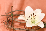 Fototapety Crown of Thorns, crucifix and Easter white Lily