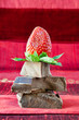 Strawberry Balancing on a Pile of Dark Chocolate