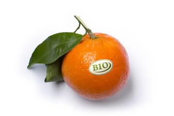 Bio Obst - Clementine
