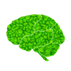 human brain, green thoughts, vector abstract background
