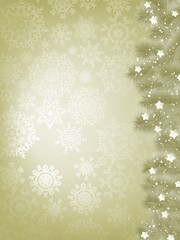 Elegant christmas background with snowflake. EPS 8