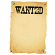 Plakat - WANTED white