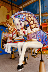 Colorful horse in carousel