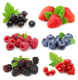 Fototapety Collection of sweet berries