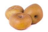 apple cultivar poster