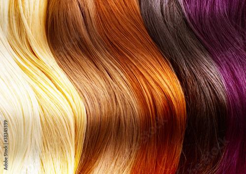 canvas print picture Hair Colors Palette