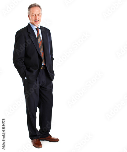 Mature full length businessman