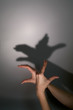 hands silhouette duck