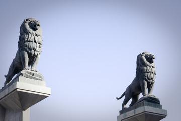 leoni sul ponte di pietra a saragozza