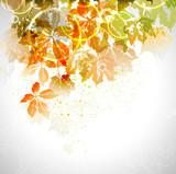 Fototapety autumn composition