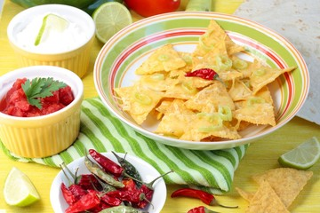 Nachos with salsa, sour cream and chilies