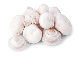 White mushrooms isolated on a white