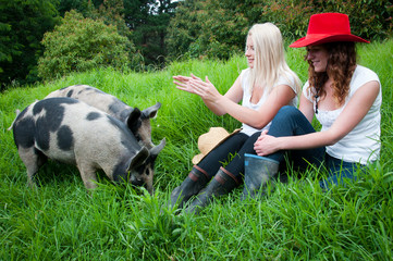 Girls with pigs in the grass