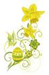 Frühling, Ostern, Osterglocken, Narzissen, gelb, grün