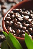 Fototapety Ziarna kawy w glinianej misce