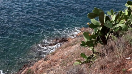 Rocky Coast Above The Sea, Porto Azzurro, Elba Island