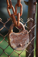 Rusty padlock, iron chain and chain-link iron fence close-up