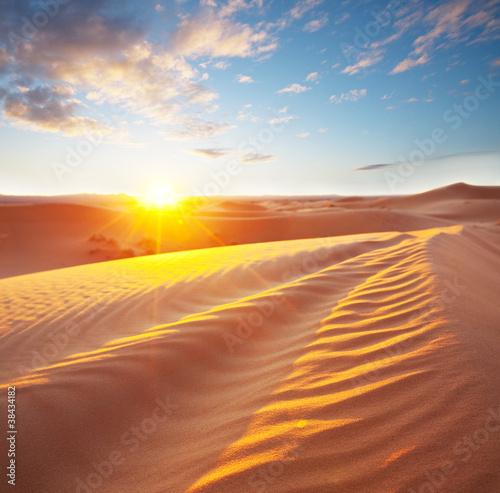 Fototapeta Desert