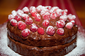 Close Up of a Chocolate Raspberry Cake