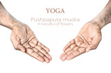 Yoga Pushpaputa mudra