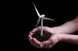 wind turbine growing in hands