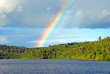 Rainbow in the Wilds