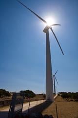 Pale Eoliche Energie Alternativa