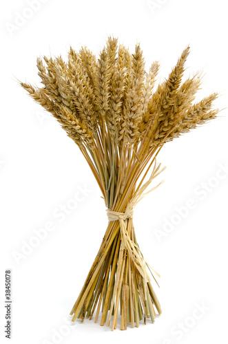 Leinwanddruck Bild Gebündelte Weizenähren