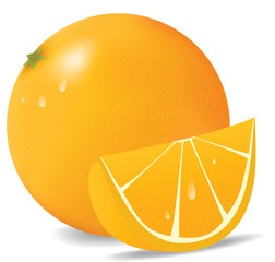 Fresh orange in vector