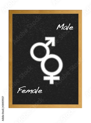Blackboard with male and female signs.