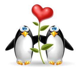 pinguini con cuore