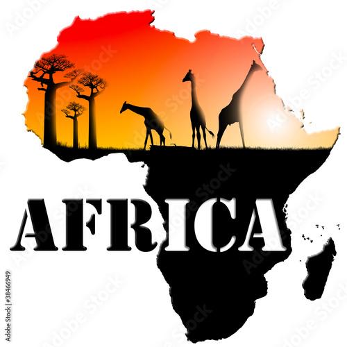 Fototapeten,landschaft,afrika,afrikanisch,baum