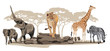 Fototapeten,tier,afrikanisch,afrika,elefant