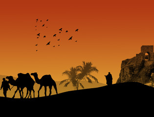 Sahara background