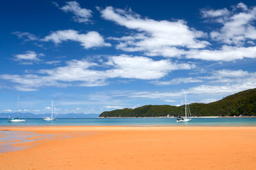 Abel Tasman National Park, South Island, New Zealand